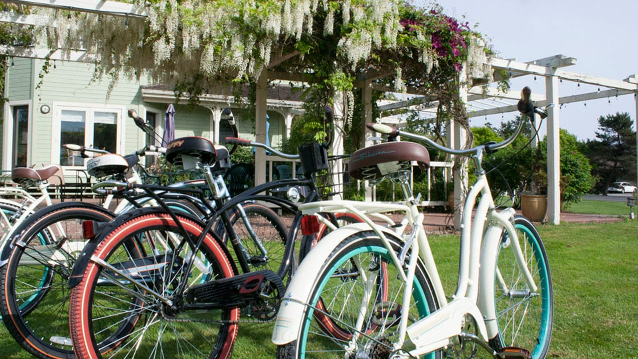 Bicycle Rentals and Tours