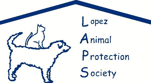 animal protection shelter rescue