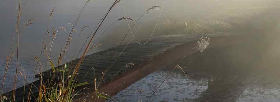 lopez island midnight farm compost topsoil farmstay
