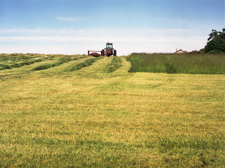 Windsock Farms & Excavation