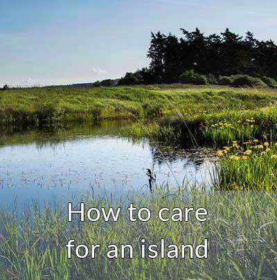 lopez island wetland leave no trace wildlife