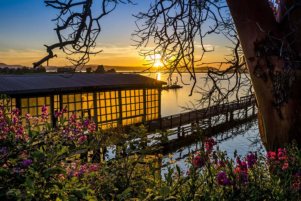 lopez island karlena pickering boat house dock fisherman bay sunset
