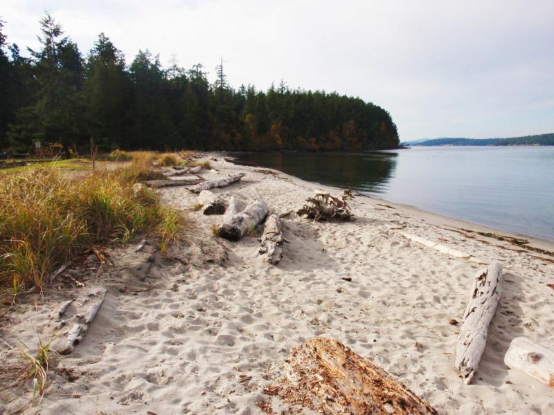 odlin park county camp ground lopez island